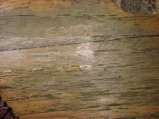 表面板ひび割れ(3)