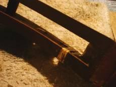 籐巻き(3)
